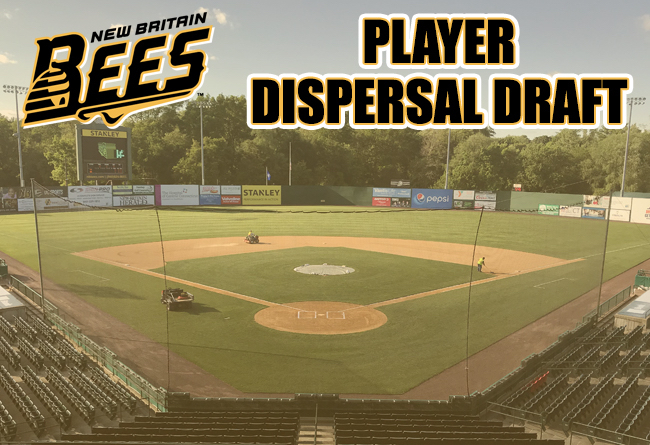 Atlantic League To Host Bees Player Dispersal Draft