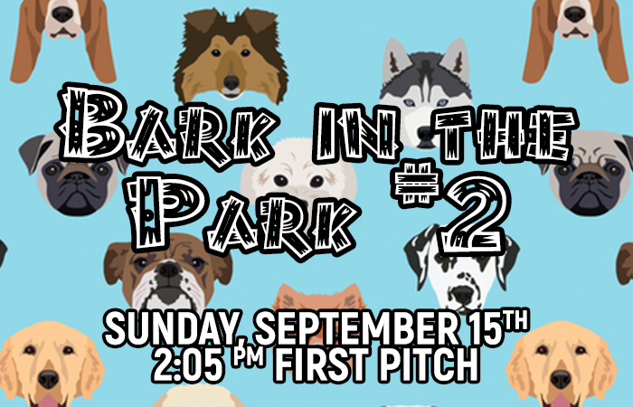 Sunday Bark In The Park