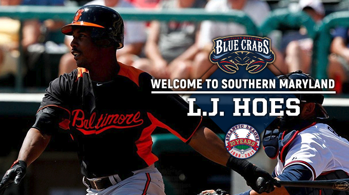 BLUE CRABS ADD MLB VETERAN L.J. HOES