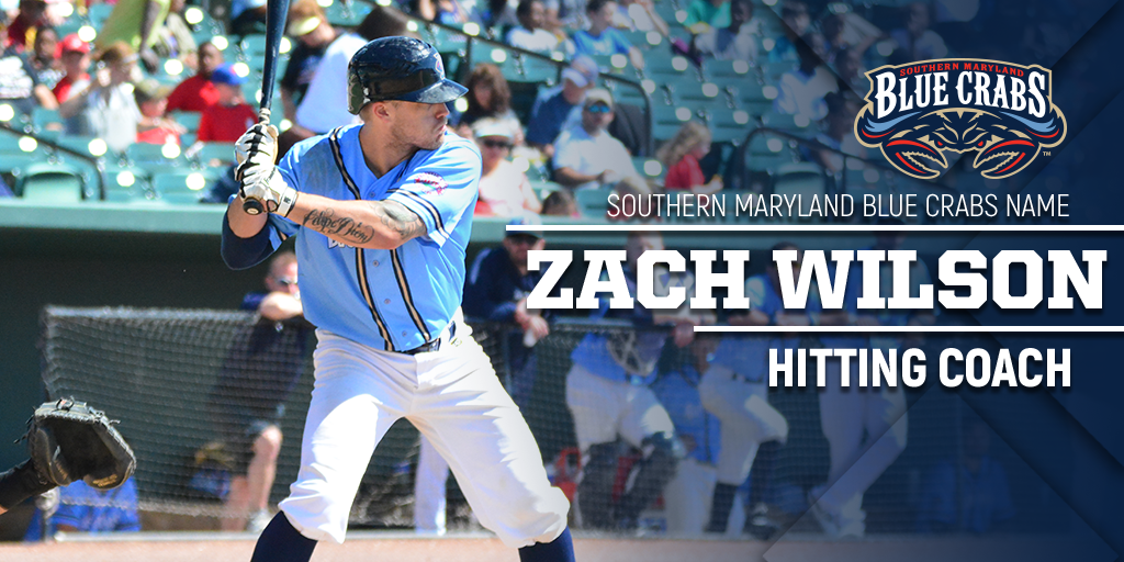 BLUE CRABS NAME ZACH WILSON AS HITTING COACH