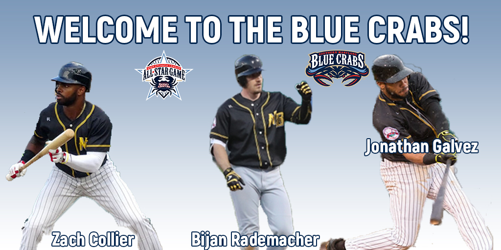 Blue Crabs Draft Trio of Bats in Bees Dispersal Draft